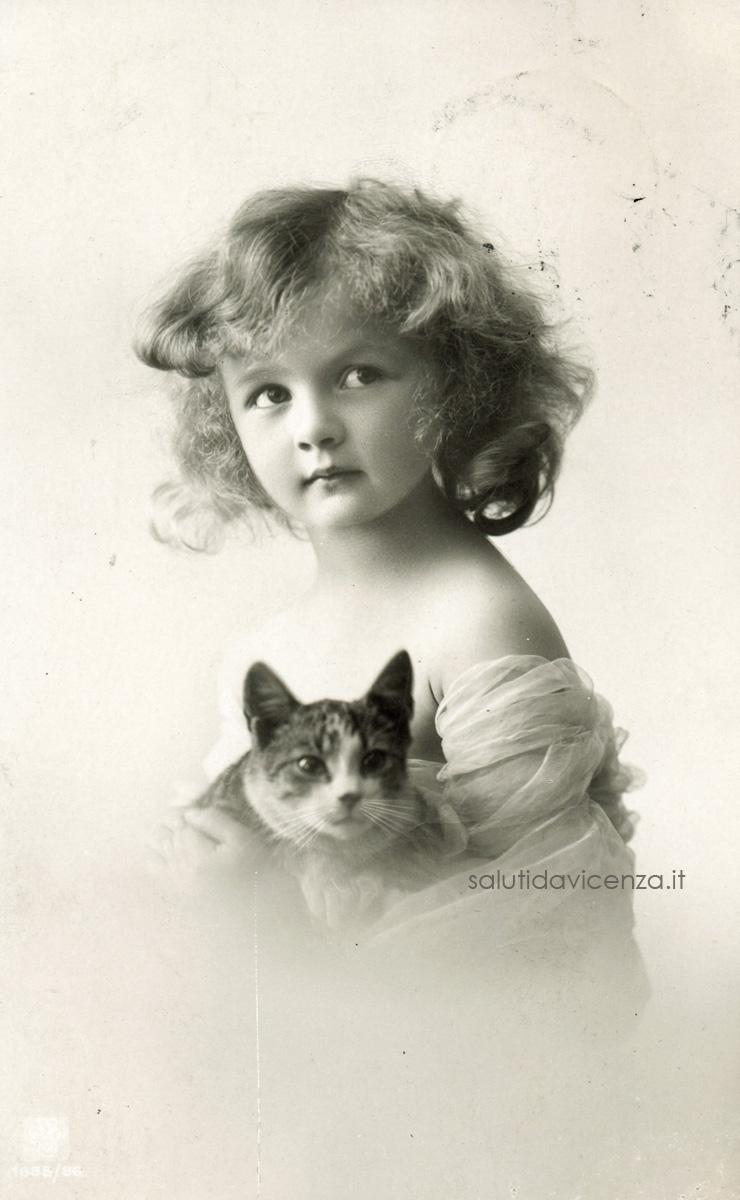 La curiosità ha gli occhi del gatto
